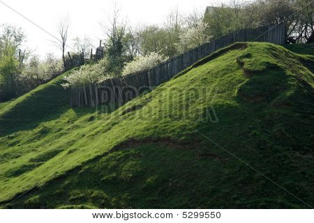 Grass Slope