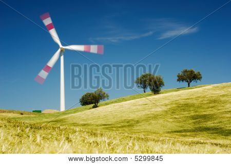Moving Wind Turbine In Golden Field