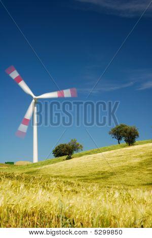 Moving Wind Turbine In Golden Meadow
