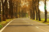 picture of paved road  - The photograph shows rural - JPG