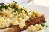 picture of scrambled eggs  - Scrambled eggs on toasted wholegrain bread - JPG