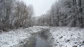 picture of ube  - beautiful landscape with winter Ubed river and forest - JPG