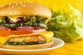 picture of veggie burger  - Vegetarian burger closeup green lettuce in background focus on foreground - JPG