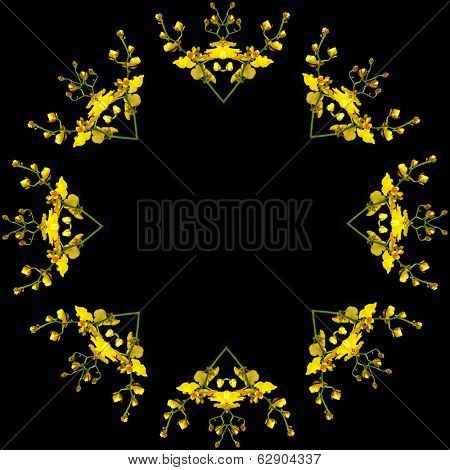 Border frame of Bright Yellow Oncidium Orchid plant isolated on black background