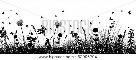 Meadow Background