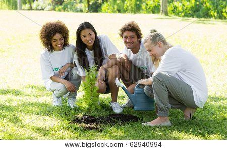 Portrait of happy volunteers planting in park