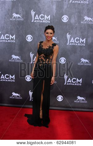 LAS VEGAS - APR 6:  Lacey Owen at the 2014 Academy of Country Music Awards - Arrivals at MGM Grand Garden Arena on April 6, 2014 in Las Vegas, NV