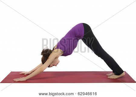 Young Woman In Downward Facing Dog Pose
