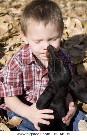 Boy And Dog In Leaves