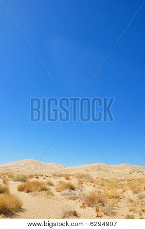 Spartan Desert