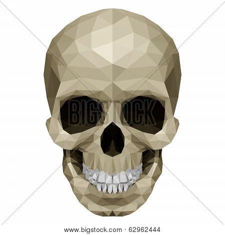 Crystul skull