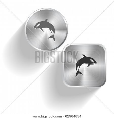 Killer whale. Vector set steel buttons
