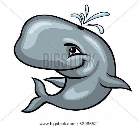 Cute Sperm Whale