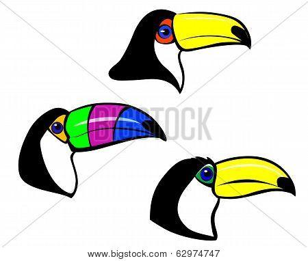 Toucan Mascot