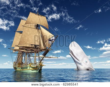 Encounter on the High Seas