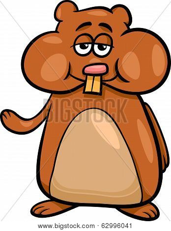 Hamster Character Cartoon Illustration