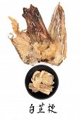 Angelica herb root used in traditional chinese herbal medicine with mandarin title script translatio