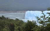 Argentina. Perito Moreno Glacier And Forest.