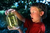 picture of lightning bugs  - Boy with a jar of fireflies - JPG