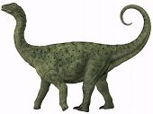 stock photo of behemoth  - Saltasaurus was a sauropod dinosaur of the Cretaceous Period of Argentina - JPG