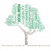 High resolution green concept or conceptual tree media word cloud on black background wordcloud