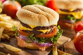 picture of hamburger-steak  - Beef Cheese Hamburger with Lettuce Tomato and Onions
