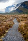 picture of tramp  - Public tramping track at Tongariro National Park in New Zealand - JPG