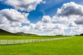 stock photo of pastures  - Green Pasture With White Fence With Large Puffy Clouds - JPG