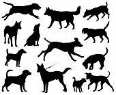 stock photo of hound dog  - Dogs vector silhouettes - JPG