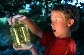 stock photo of lightning bugs  - Boy with a jar of fireflies - JPG