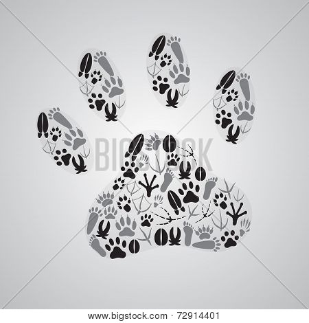Various Animal Footprints Eps10