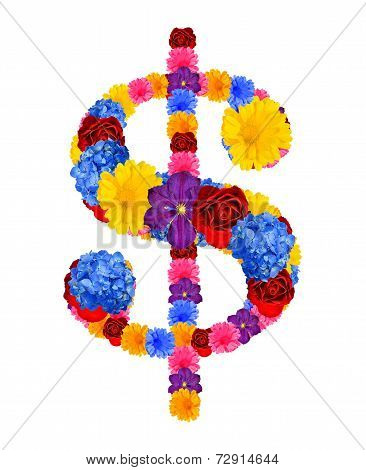 dollar sign from flowers