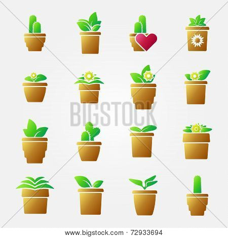 Bright home flowers icons set