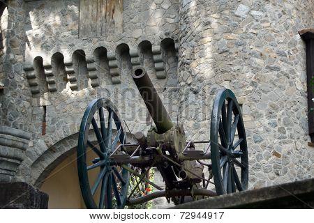 Peles Castle Infanteria Gun