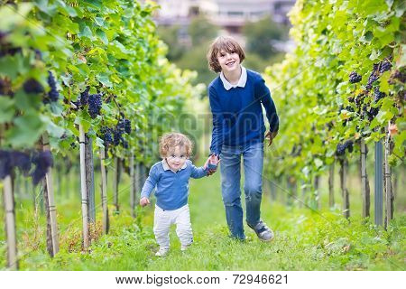Cute Laughing Boy And His Baby Sister Running Together In A Beautiful Autumn Vine Yard