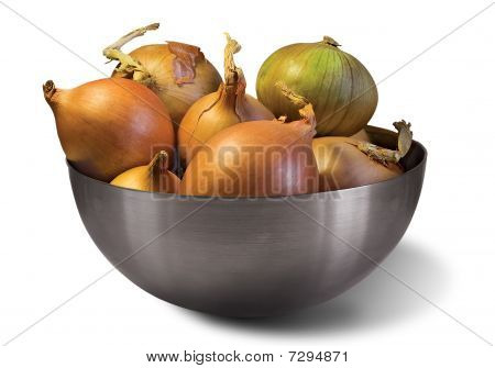 Onion And Steel Bowl