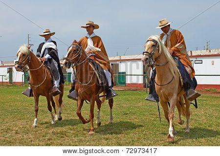 Paso Horses and Riders