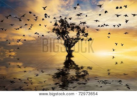 Single Tree Sunrise And Birds