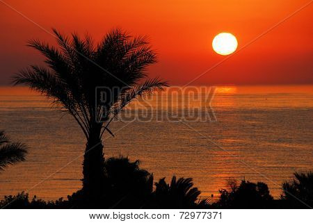 Gorgeous Sunrise Over Sea