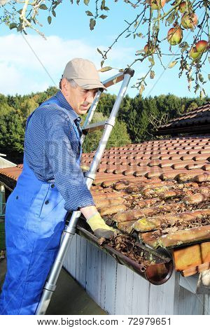 Gardener Cleaning A Rain Gutter From Leaves