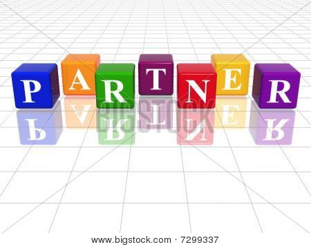 Colour Partner