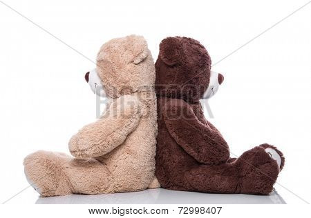 Teddy bears back to back isolated on white background