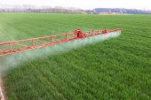 image of pesticide  - Spraying the herbicides on the green field - JPG