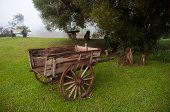 picture of chariot  - Old Wooden chariot in countryside of Misiones Argentina - JPG