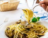 image of italian parsley  - Typicall Italian spaghetti style with vongole and parsley - JPG