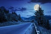 pic of full_moon  - asphalt road going off into the distance on the left passes through the green shaded forest at night in full moon light - JPG