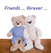 picture of  friends forever  - Best friends forever  - JPG