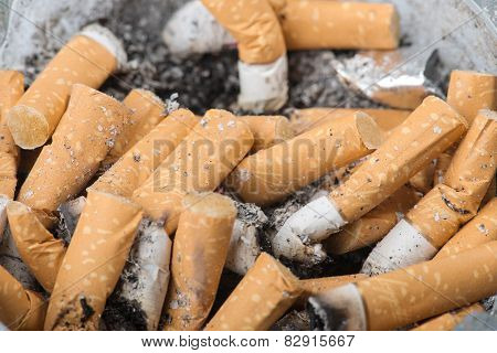 Extinguished Cigarette Closeup