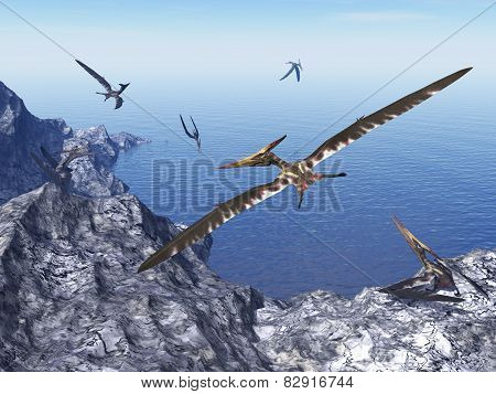 Pteranodon birds - 3D render