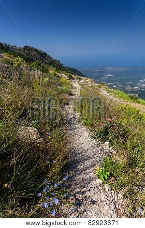 Long Gravel Path On High Mountain At Sunny Day